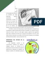 14-10-01 Origen del dibujo.doc