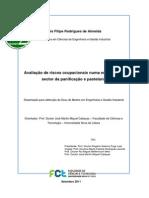 Almeida_2011.pdf