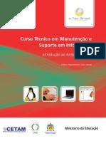 Curso Técnico em Manutenção e Suporte em Informática.pdf