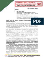 CONAN PERU DIC 2013.docx