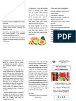 TRIPTICO DIA DEL LOGRO.doc