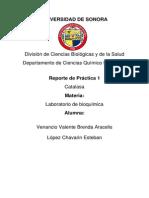 UNIVERSIDAD DE SONORA Deshidrogenasa Láctica practica 2.docx