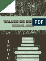 VALLES ESPACIO ARQUITECTONICO COLONIA.pdf