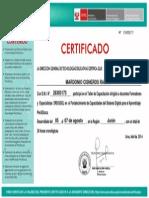 52171.pdf