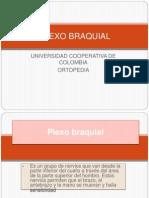 PLEXO BRAQUIAL.pptx