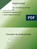 Concepto de productividad.pdf