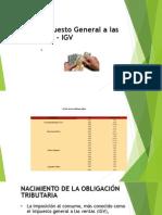 expo igv - v ciclo 2014.pptx