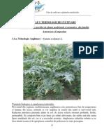 Curs Cultivare Cap3