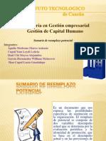 SUMARIO DE REEMPLAZO.pptx