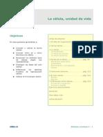 1 NEURONAS Y NEUROTRANSMISORES (1).pdf
