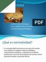 Normativilidad.pptx