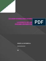 Linea del tiempo eclusion guerrillera latinoamericana.pptx