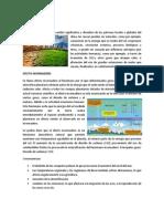 CAMBIO CLIMATICO 2.docx