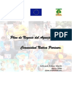 PLAN DE NEGOCIOS DEL AGUAJE.pdf