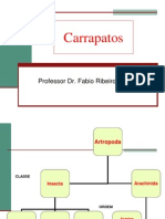 Carrapatos.pdf