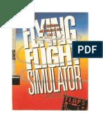 Flying Flight Simulator