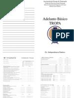 Adelanto Basico Para Imprimi.pptx
