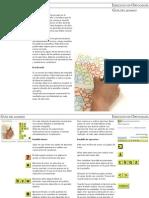 GuiaAlumnoP.pdf