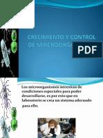 1.CRECIMIENTO Y CONTROL DE MIRCROORGANISMOS 2.ppt