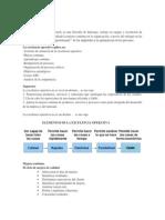 Exelencia Operativa (1).pdf