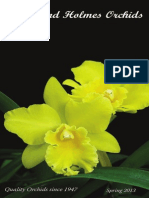 Spring 2013 Catalog Orchids