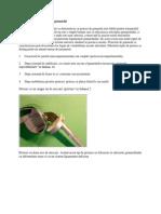 Clasificarea Protezelor de Genunchi