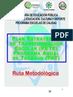 DOCUMENTO PETE- PAT  16 JULIO 13.doc