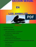 Reproduccion_sexual_en_animales_-_Mickael_Hueso_Gomez_y_Jose_Luis_Martinez_Perez.pdf