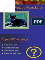 Pp04 Foundation Introduction