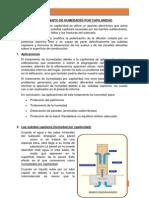 TRABAJO - Tratamiento de humedades por capilaridad (1).docx