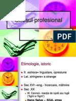 Stresul Profesional 2011