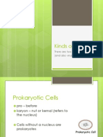 Kinds of Cells Presentation.pptx
