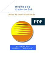 ManualPaulistinha(1).pdf