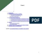 Tema 6 - La juntura PN.pdf