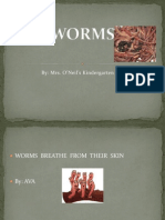 worms 5bautosaved5d