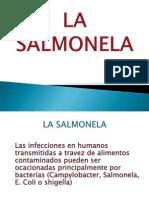 SALMMOOMO.ppt