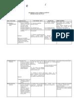 DIVERSIFICACION CURRICULAR.docx
