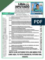 Propuestas de libio.pdf