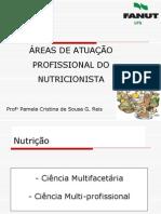 Áreas de atuação do profissional nutricionista.pdf