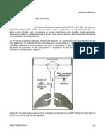 VAFO.pdf