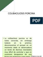 colibaciliosisporcina-121130003842-phpapp01.pptx