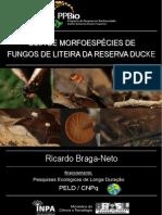 Guia Hongos.pdf