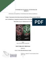 tesis bruja.pdf