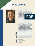 entrevista242.pdf