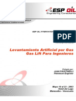 MANUAL Gas Lift.pdf