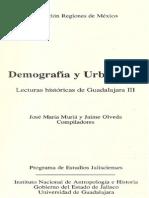 Una ciudad que se despide. Lecturas históricas de Guadalajara III