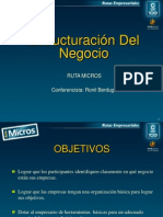 ESTRUCTURACION DEL NEGOCIO 2010.ppt