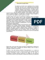 POLÍTICAS PÚBLICAS HOJE.pdf