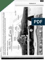 1° CS. NATURALES. DAGNINO.pdf