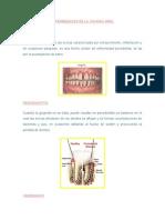 enfermedadesdelacavidadoral-120911113301-phpapp01.doc